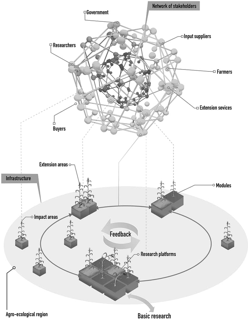 Schematic illustration of CIMMYT's knowledge and technology development networks, or hubs, for sustainable maize and wheat production systems. (Graphic: CIMMYT)