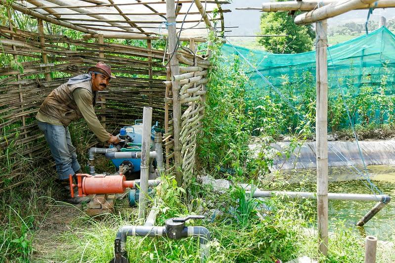 A farmer in Nepal operates a water pump for drip irrigation. (Photo: Sharad Maharjan/IMWI)
