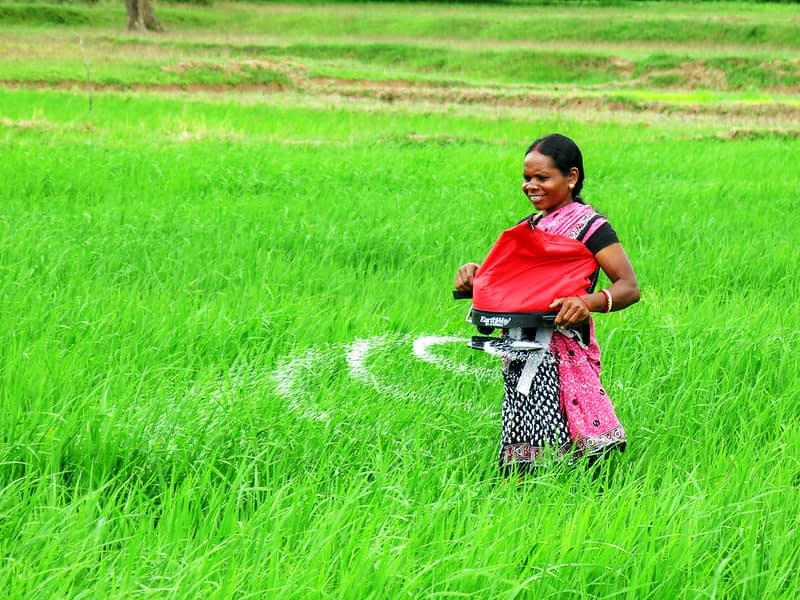A woman in India uses a precision spreader to apply fertilizer on her farm. (Photo: Wasim Iftikar)