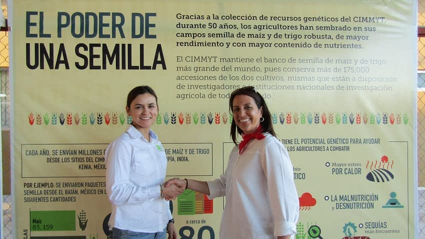 Carolina Rivera shakes the hand of Maricelis Acevedo, Associate Director for Science for Cornell University's Delivering Genetic Gain in Wheat Project and WIT mentor, after the announcement of the WIT award winners.