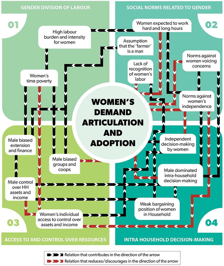 A diagram outlines the links between different factors influencing gender dynamics in demand articulation and adoption of laborsaving technologies. (Graphic: Nancy Valtierra/CIMMYT)