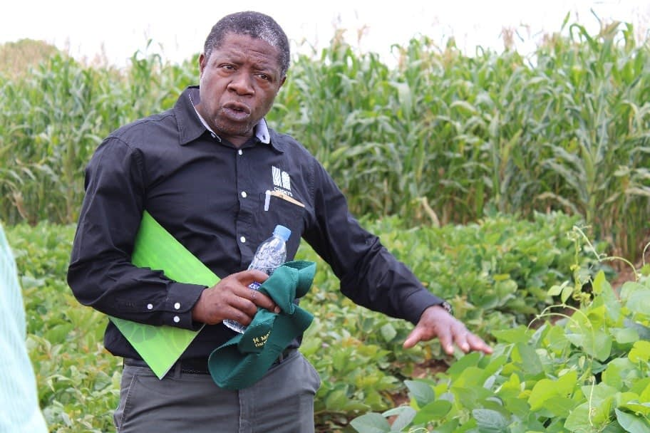 CIMMYT researcher Isaiah Nyagumbo explains conservation agriculture techniques during the annual partners field day. (Photo: Catherin Magada/CIMMYT)