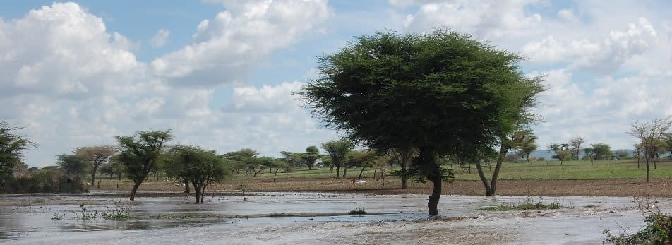 In contrast to normal rain patterns, heavy rainfall fell in central Ethiopia in early May, between the usual short (March-April) and main (June-September) rainy seasons.