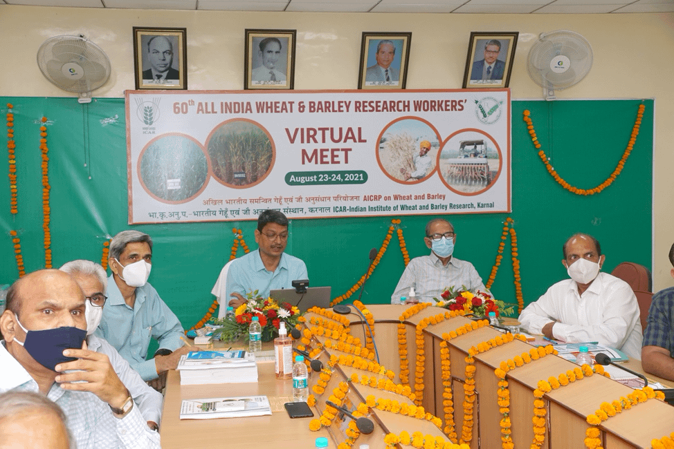 Gyanendra Pratap Singh (center), Director of ICAR-IIWBR, presents at the 60th All India Wheat and Barley Research Workers' Meet. (Photo: Courtesy of ICAR-IIWBR)